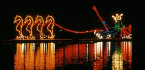 Disney's Electrical Water Pageant is a true a spectacle of glory on the water.